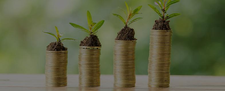 Groene lening bedrijf